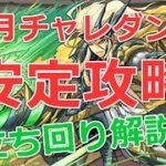 【パズドラ】2月チャレダン9(チャレンジ9/全属性必須)を安定攻略!2021年上級2